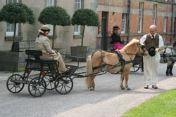 Bellcrown Minilite Competition Carriage