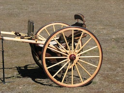 Houghton Horse size show Cart - Never used